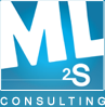 ML2S Consulting